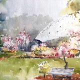 Climatron in Rain
